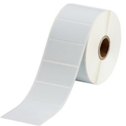 Brady TT Cryo Labels